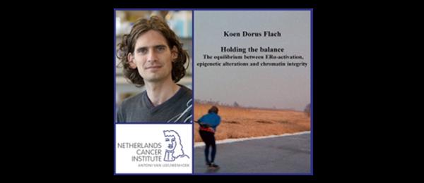Dutch PhD defence a public event - blogger.com