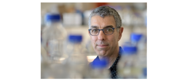 Reuven Agami - 2,5 million ERC-grant for gene regulation research